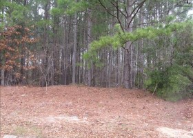 Chesnut Hill Building Lot - Camden, SC 29020